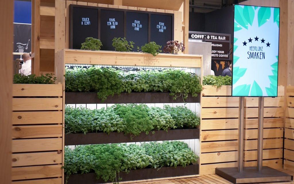 vertical-farming-experience-area